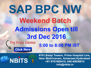 weekend-batch-sap-bpc